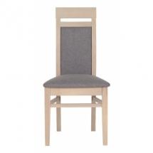 Jídelní židle AXEL AX/13 thuje, dub latte